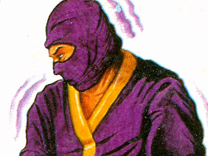 "REMCO ""Secret of the Ninja"" box art"