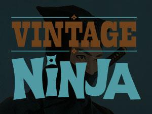 Ninja vinyl
