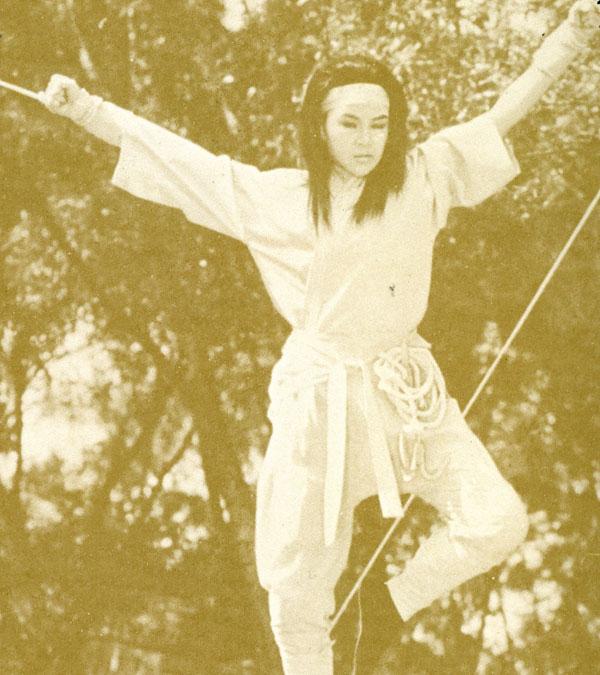 Challenge-Lady-Ninja_11