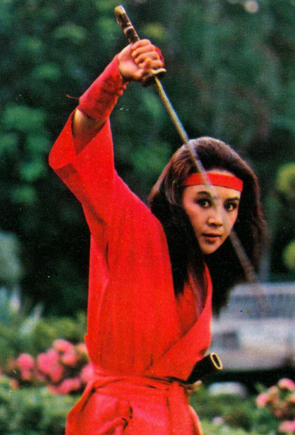 Challenge-Lady-Ninja_2