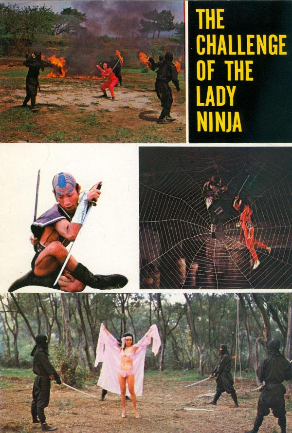 Challenge-Lady-Ninja_4