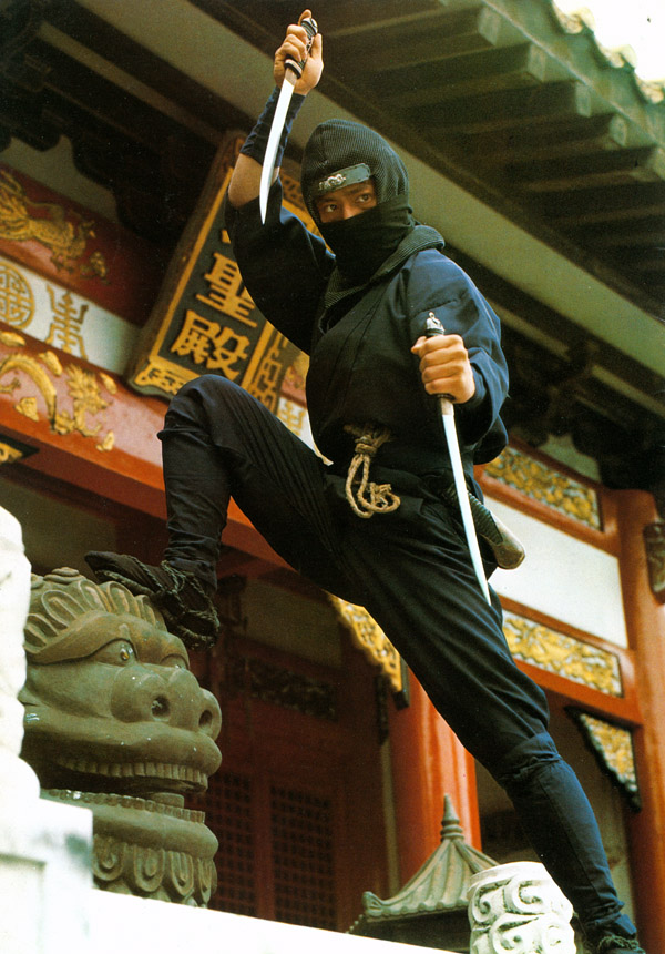 NinjaDragonsDen2